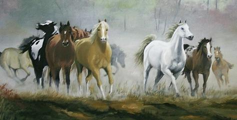 Wild Horses #