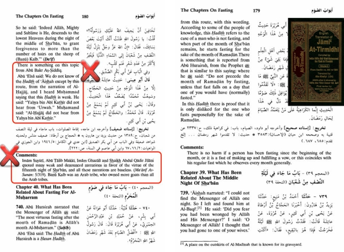 Wrong Interpretation and Fabrication of Wahhabism in Tirmizi English Edition