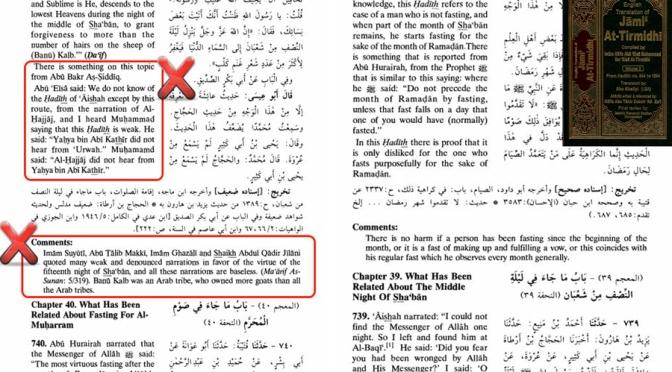 Wrong Interpretation and Fabrication of Wahhabism in Tirmizi English Edition